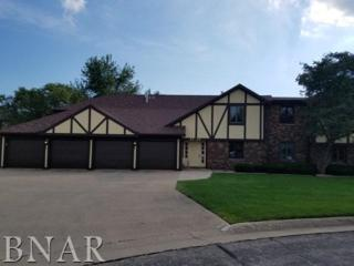 30 Crystal Ct, Pontiac, IL 61764 (MLS #2171569) :: The Jack Bataoel Real Estate Group