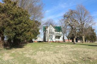 2234 Bearsdale Rd, Clinton, IL 61727 (MLS #2171576) :: The Jack Bataoel Real Estate Group