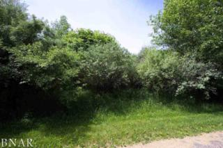 Lot 60 & 61 Apache Path, Danvers, IL 61732 (MLS #2171706) :: Berkshire Hathaway HomeServices Snyder Real Estate