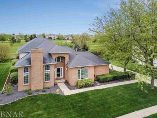 401 Ironwood, Normal, IL 61761 (MLS #2171842) :: Berkshire Hathaway HomeServices Snyder Real Estate