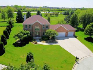 1001 Turtle Creek, Normal, IL 61761 (MLS #2171862) :: Berkshire Hathaway HomeServices Snyder Real Estate