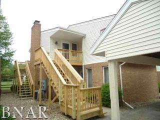 903 N Linden #17, Normal, IL 61761 (MLS #2171865) :: Berkshire Hathaway HomeServices Snyder Real Estate
