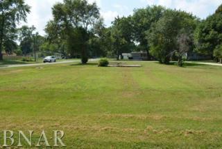 210 S Washington, Hudson, IL 61748 (MLS #2171900) :: Berkshire Hathaway HomeServices Snyder Real Estate