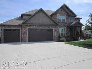 3 Litta Ct, Bloomington, IL 61704 (MLS #2171911) :: Berkshire Hathaway HomeServices Snyder Real Estate