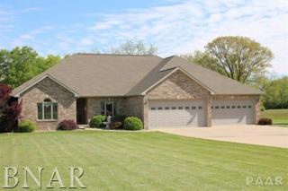 353 Carlock Road, Carlock, IL 61725 (MLS #2171975) :: Berkshire Hathaway HomeServices Snyder Real Estate