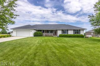 20286 N 1960 East Road, Towanda, IL 61776 (MLS #2172000) :: Berkshire Hathaway HomeServices Snyder Real Estate