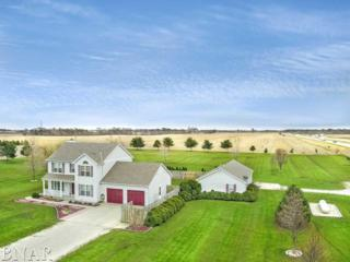 14057 E 2400 North Rd, Hudson, IL 61748 (MLS #2171082) :: Berkshire Hathaway HomeServices Snyder Real Estate