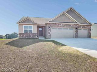 28 Cross Creek Court, Downs, IL 61736 (MLS #2171123) :: Berkshire Hathaway HomeServices Snyder Real Estate