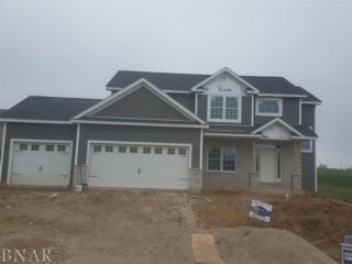104 Dode, Downs, IL 61736 (MLS #2171428) :: Berkshire Hathaway HomeServices Snyder Real Estate