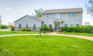 202 Comet Ln, Heyworth, IL 61745 (MLS #2171669) :: Berkshire Hathaway HomeServices Snyder Real Estate