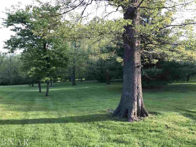 LOT 28 Briar, Bloomington, IL 61705 (MLS #2171856) :: The Jack Bataoel Real Estate Group
