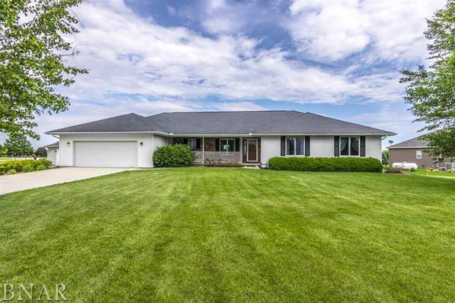 20286 N 1960 East Road, Towanda, IL 61776 (MLS #2172000) :: The Jack Bataoel Real Estate Group