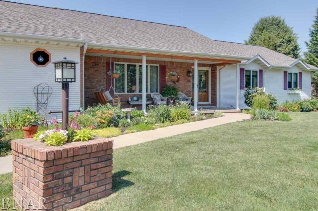 213 N Darnall, Minier, IL 61759 (MLS #2172288) :: The Jack Bataoel Real Estate Group