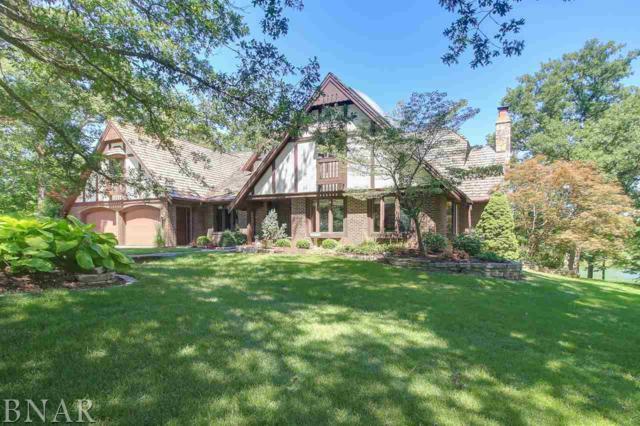 234 Macallen Lake Rd, Carlock, IL 61725 (MLS #2172434) :: Berkshire Hathaway HomeServices Snyder Real Estate