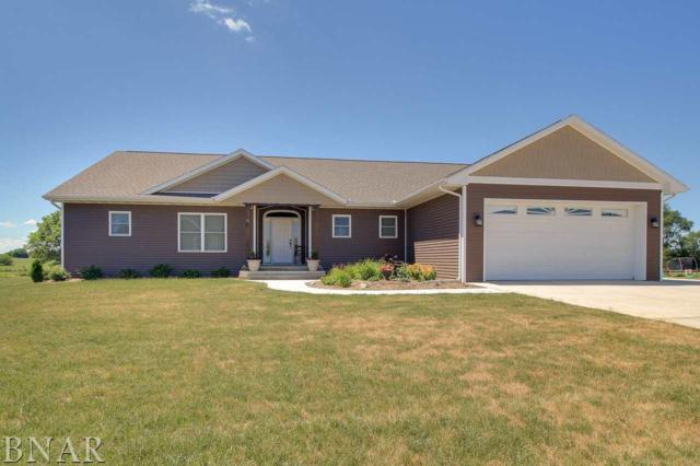 11 River Run, Downs, IL 61736 (MLS #2172436) :: The Jack Bataoel Real Estate Group