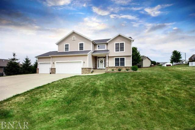 509 Park Ct, Heyworth, IL 61745 (MLS #2172627) :: The Jack Bataoel Real Estate Group