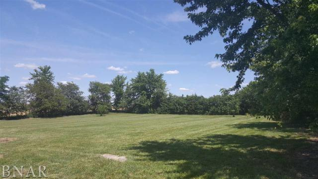 21740 Clarksville, Lexington, IL 61753 (MLS #2172681) :: The Jack Bataoel Real Estate Group