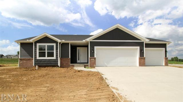 110 Dode, Downs, IL 61736 (MLS #2172724) :: Janet Jurich Realty Group