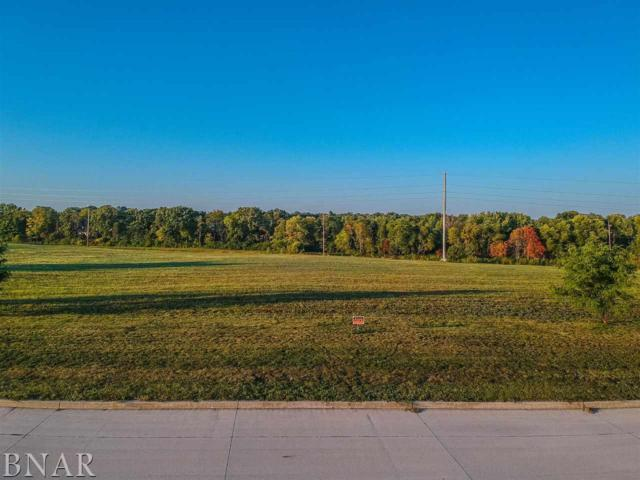 Lot 11 Crossbow Dr, Bloomington, IL 61705 (MLS #2173573) :: Berkshire Hathaway HomeServices Snyder Real Estate