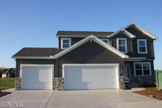 1 Big Timber, El Paso, IL 61738 (MLS #2173678) :: Jacqui Miller Homes