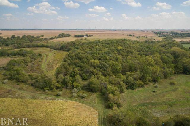 232 2225 East Road, Carlock, IL 61725 (MLS #2173762) :: BNRealty