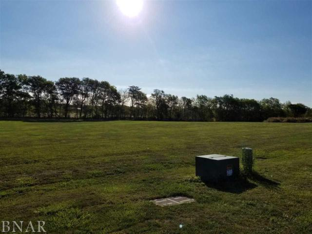 Lot 3 Caudon's Add, Lexington, IL 61753 (MLS #2173794) :: The Jack Bataoel Real Estate Group