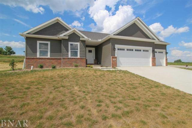 510 Raef, Downs, IL 61736 (MLS #2174218) :: The Jack Bataoel Real Estate Group