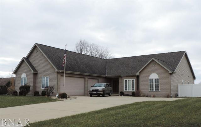 10 Harvey Rd, Downs, IL 61736 (MLS #2174540) :: The Jack Bataoel Real Estate Group