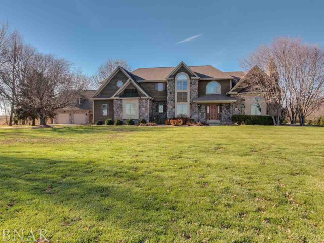 8266 N 1625 East Road, Bloomington, IL 61705 (MLS #2174555) :: Janet Jurich Realty Group