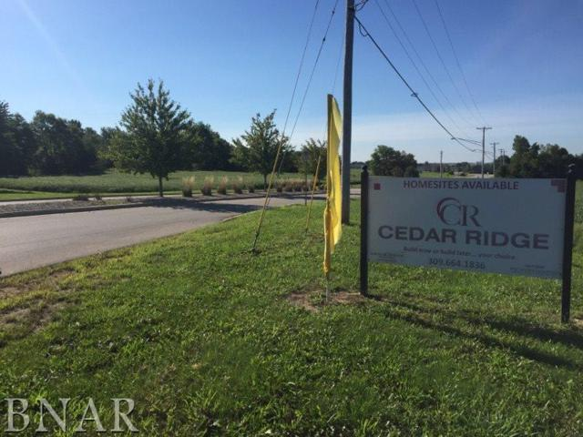 Lot 58 Cedar Ridge, Bloomington, IL 61704 (MLS #2174600) :: BNRealty