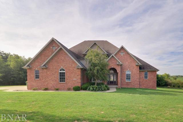 20141 Sterling, Bloomington, IL 61705 (MLS #2180076) :: BNRealty