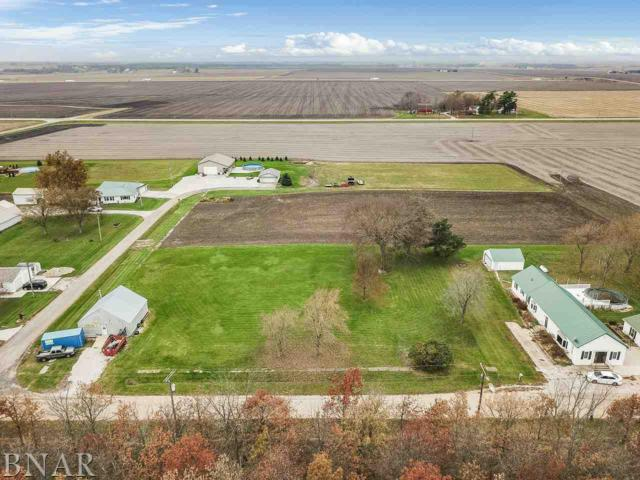 317 Illinois, Panola, IL 61738 (MLS #2180489) :: Berkshire Hathaway HomeServices Snyder Real Estate