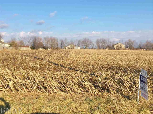 lot 1 Johnson Sub, Leroy, IL 61752 (MLS #2180719) :: BNRealty