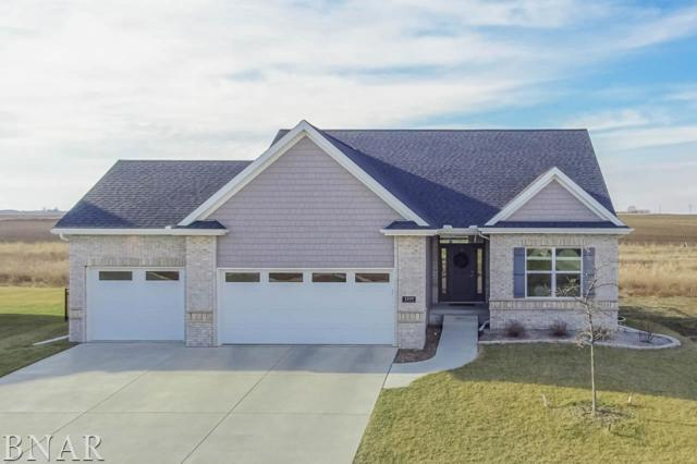 1219 Willow Creek, Bloomington, IL 61705 (MLS #2180819) :: Berkshire Hathaway HomeServices Snyder Real Estate