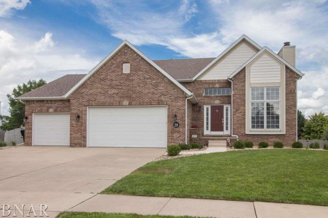 28 Paige Pl, Bloomington, IL 61704 (MLS #2181017) :: Berkshire Hathaway HomeServices Snyder Real Estate
