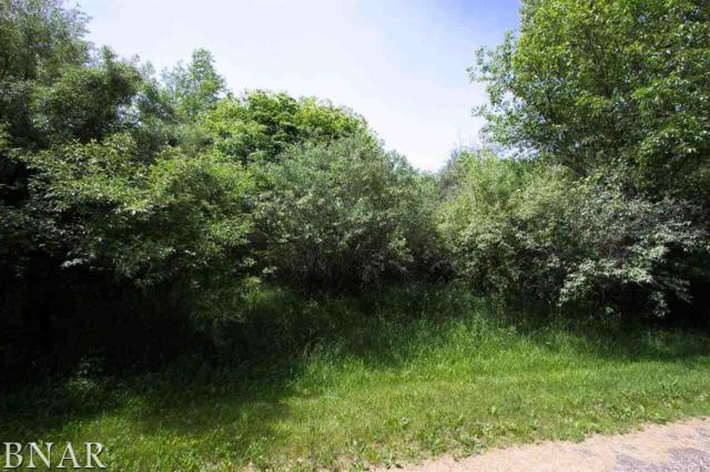 Lot 60 & 61 Apache Path, Danvers, IL 61732 (MLS #2181047) :: Berkshire Hathaway HomeServices Snyder Real Estate