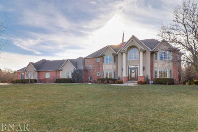 8348 N 1625 East Rd, Bloomington, IL 61705 (MLS #2181146) :: Berkshire Hathaway HomeServices Snyder Real Estate