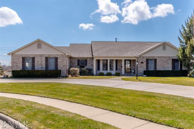 15 Smokey Ct, Bloomington, IL 61704 (MLS #2181147) :: BNRealty