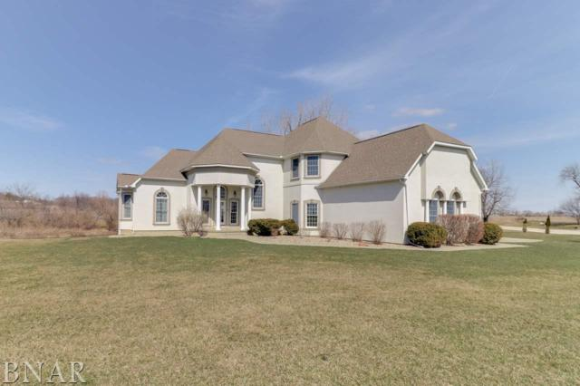 24110 Ron Smith Memorial Hwy, Hudson, IL 61748 (MLS #2181271) :: BNRealty
