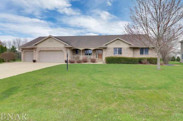 9358 Abbey Way, Downs, IL 61736 (MLS #2181496) :: BNRealty