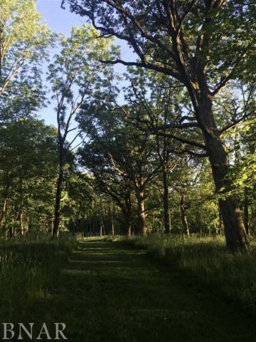 Kentuckiana Rd, Mackinaw, IL 61755 (MLS #2181517) :: Berkshire Hathaway HomeServices Snyder Real Estate