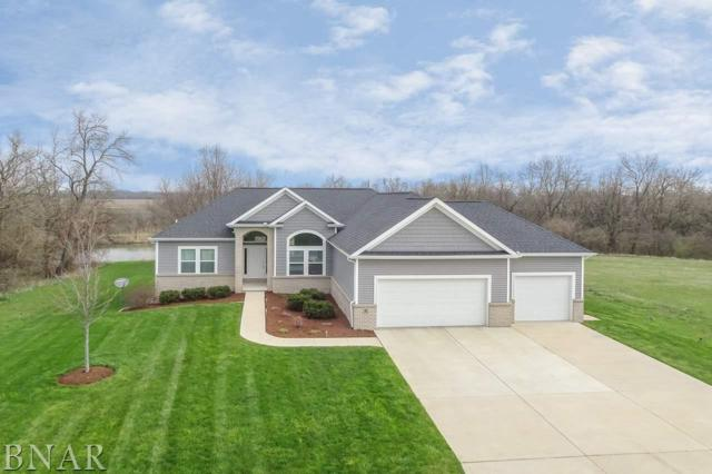5 Big Timber, Kappa, IL 61738 (MLS #2181652) :: Berkshire Hathaway HomeServices Snyder Real Estate