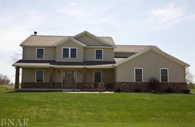 7966 Heron's Glenn Court, Wapella, IL 61777 (MLS #2181709) :: BNRealty