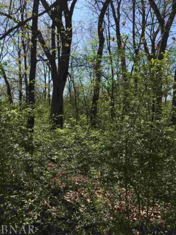 Lot 121,122,123 Kickapoo, Danvers, IL 61732 (MLS #2181827) :: Jacqui Miller Homes