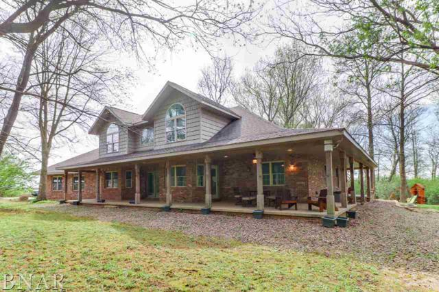 11790 E 850 North Rd, Shirley, IL 61772 (MLS #2181859) :: Janet Jurich Realty Group