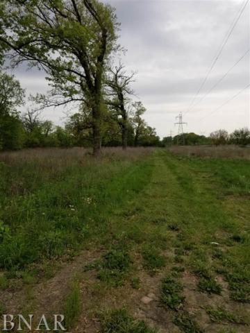 E Carle Springs Road, Wapella, IL 61777 (MLS #2181885) :: BNRealty