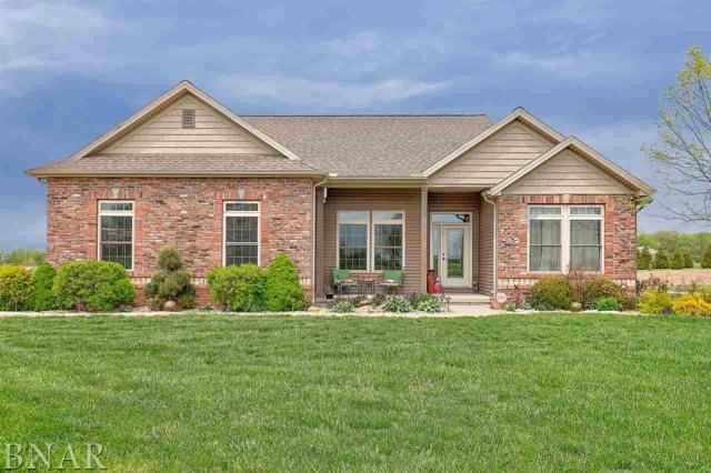 7979 Heron's Glen Ct, Wapella, IL 61777 (MLS #2181889) :: Berkshire Hathaway HomeServices Snyder Real Estate