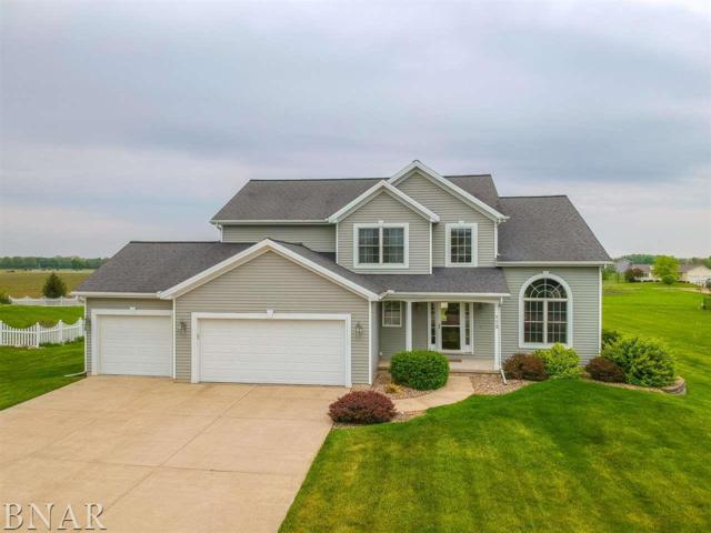 113 Marsh Hawk Dr, Leroy, IL 61752 (MLS #2181913) :: The Jack Bataoel Real Estate Group