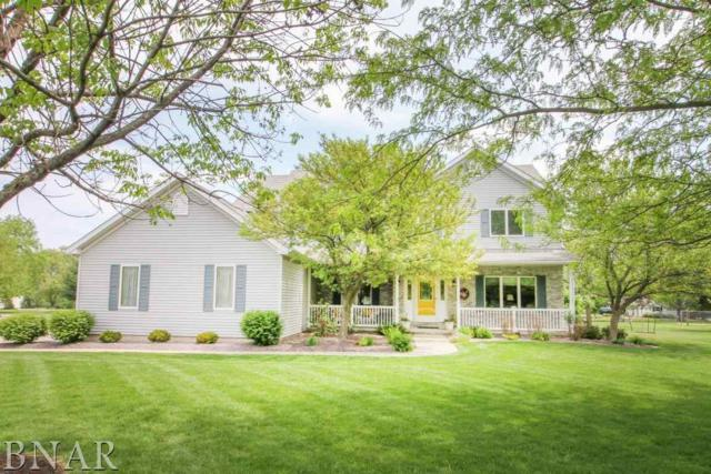 10162 Old Sawmill Rd, Bloomington, IL 61705 (MLS #2181919) :: Janet Jurich Realty Group