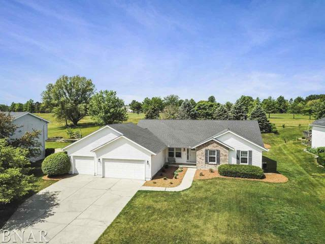 1207 Ironwood Cc Dr., Normal, IL 61761 (MLS #2182102) :: Janet Jurich Realty Group